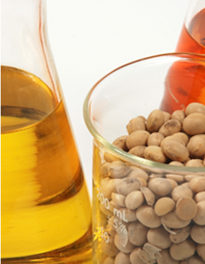 Zoye FAQ - oil with soybeans